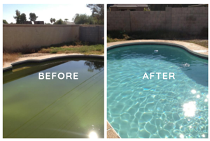 Royal Swimming Pools  pool Maintenance made easy